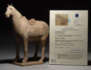 Ancient Chinese Tang Dynasty Pottery Terracotta Horse
