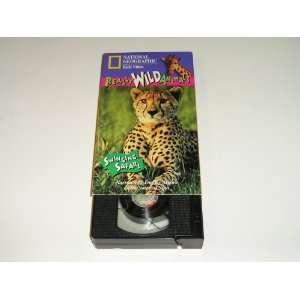 Really Wild Animals Swinging Safari (44 Minute Vhs