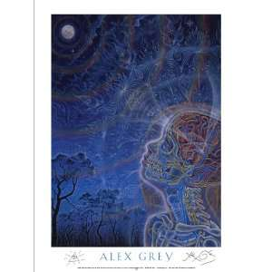 Wonder Poster Signed By Alex Grey: Everything Else
