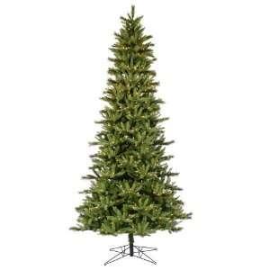5.5 X 35 Slim Waconia Pine Dura Lit 300 Clear Lights