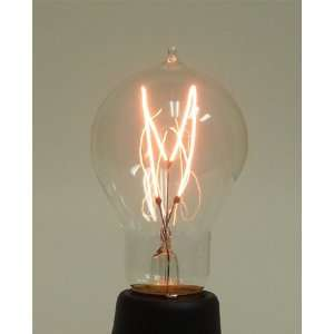 60 Watt 1890 Victorian Carbon Filament A19 Bulb: Home