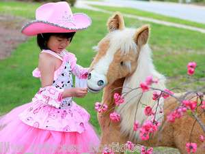 Boutique cowgirl Tutu dress princess birthday pageant halloween dress