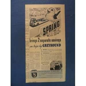 Greyhound Bus Line, Print Ad (Robin/bus/spring.) Orinigal 1937 Vintage