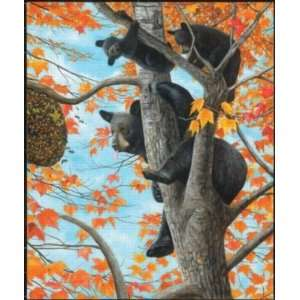 Up a Tree 550pc Jigsaw Puzzle by Ervin Molnar Toys & Games
