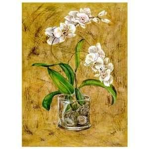 Flores Blancas I Poster Print: Home & Kitchen