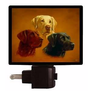 Light   Lab Portraits   Labrador Retriever LED NIGHT LIGHT Home