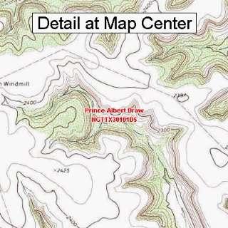 USGS Topographic Quadrangle Map   Prince Albert Draw, Texas (Folded