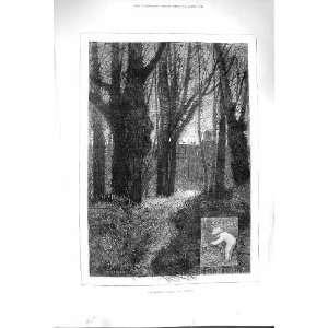 1880 OCTOBER SCENE TREES FOREST MONTBARD FINE ART