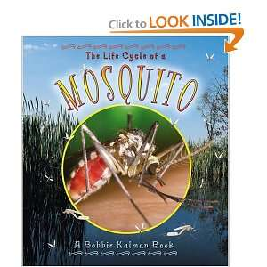 The Life Cycle of a Mosquito (9780778706953): Bobbie