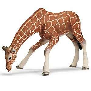 Schleich Wild Life Giraffe Female, Drinking Toys & Games