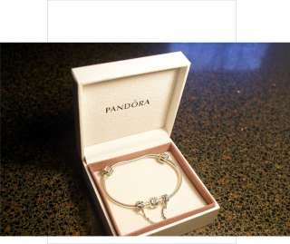 Authentic Pandora clasp bracelet with Crazy clips raindrop safety