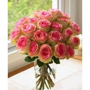 Two Dozen Long Stem Pink Roses  Grocery & Gourmet Food