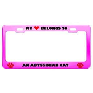 An Abyssinian Cat Pet Pink Metal License Plate Frame Tag