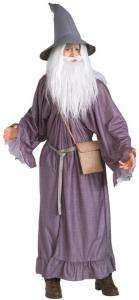 Wizard Costume   Family Friendly Costumes