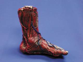 Skinned Alive Left Foot Prop Body Part   Decorations & Props