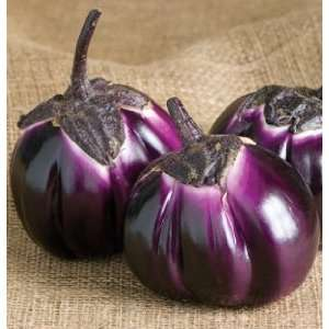 Hybrid Eggplant Barbarella 25 Seeds Per Packet Patio, Lawn & Garden