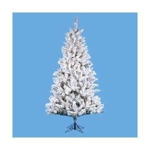 9 Pre Lit Flocked Norway Pine Christmas Tree   Clear