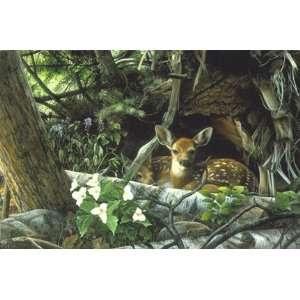 Deer Print Undercover II
