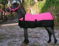 Miniature Mini Horse~Donkey FOAL Waterproof Blanket